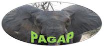 PAGAP